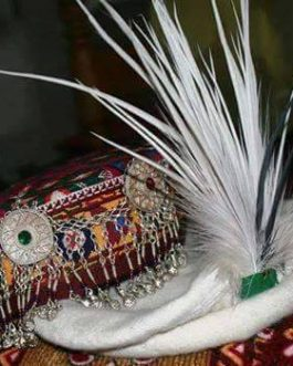 Peacock Feather Crowns